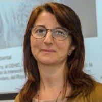 Stefania Barca
